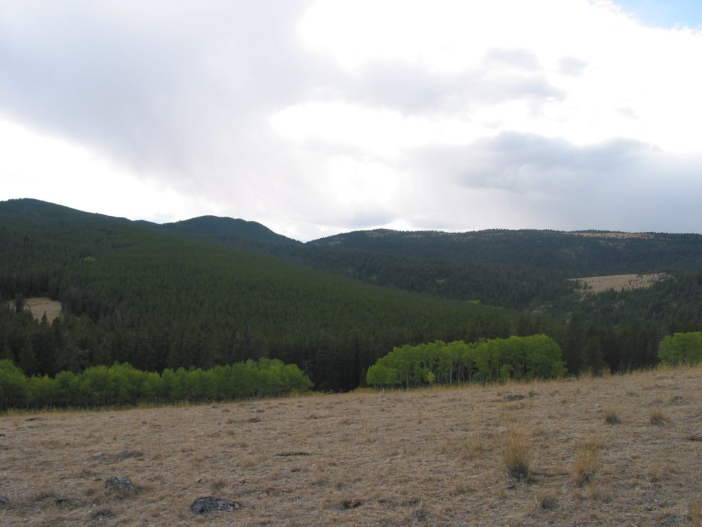 Photo of Montana's Castle Mountains