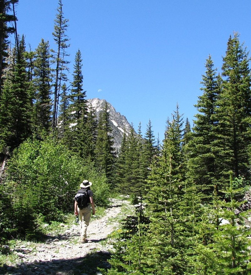 A Hiker on the Big Timber Creek trail