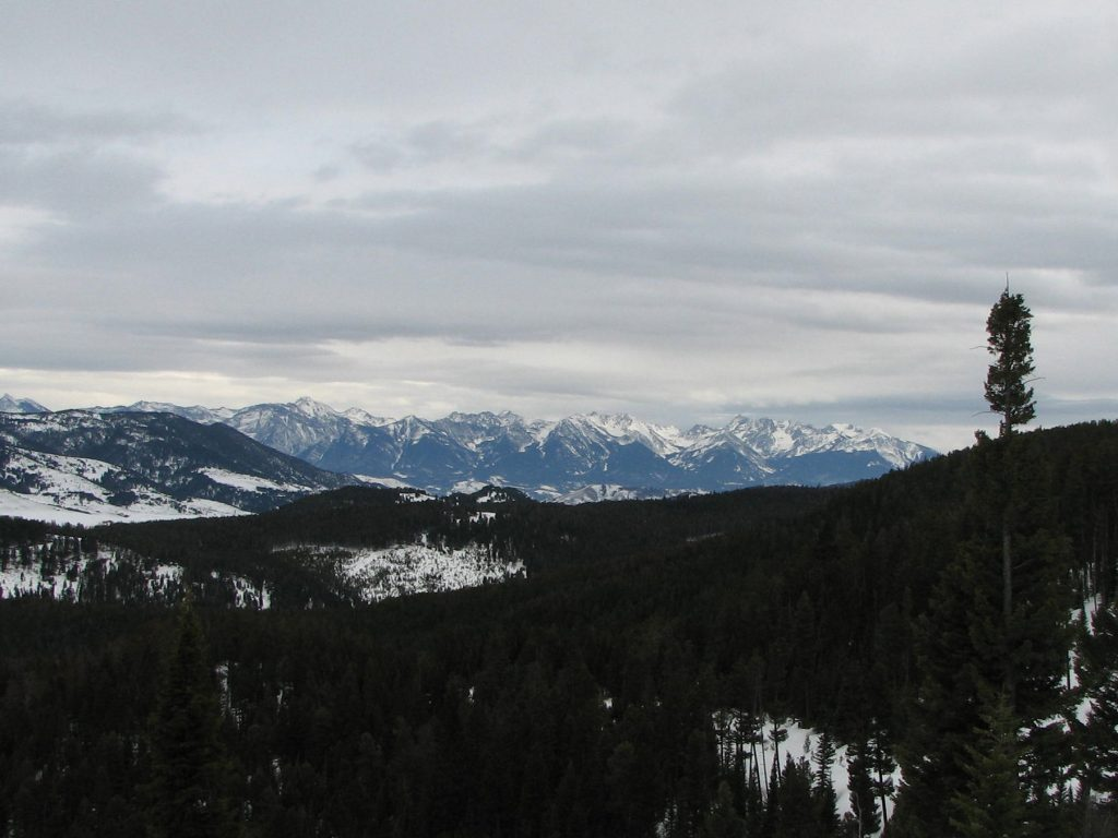 Absaroka Mountains from Goose Creek