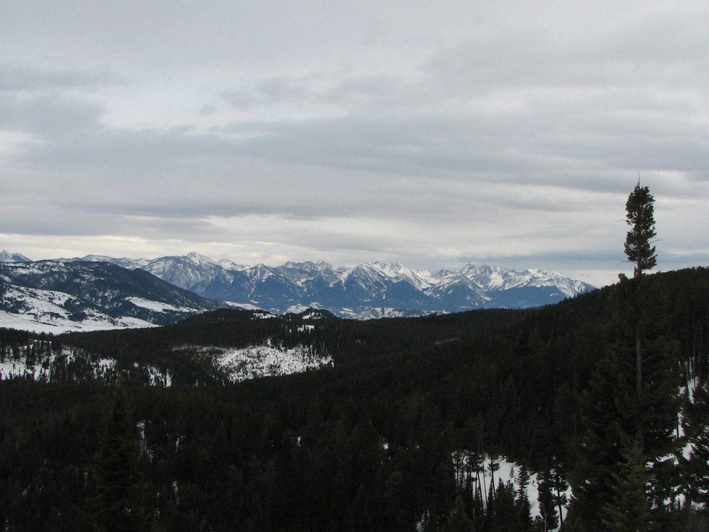 Absaroka Mountains from Goose Creek