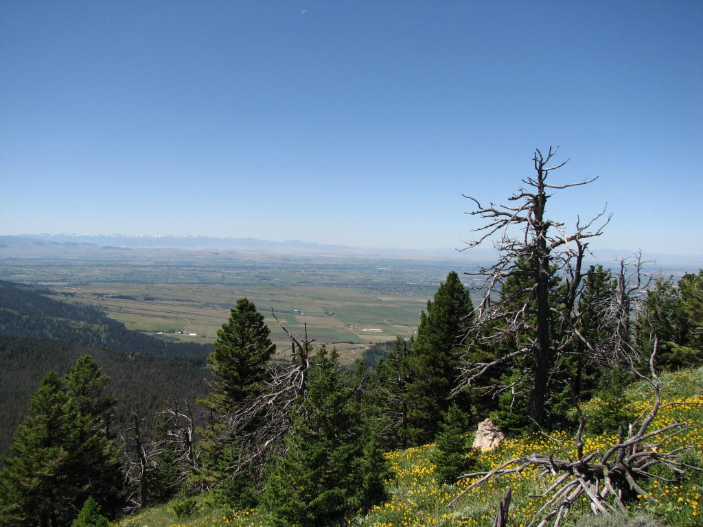 Photo looking into the Gallatin Valley from teh Chestnut Mountain Trail
