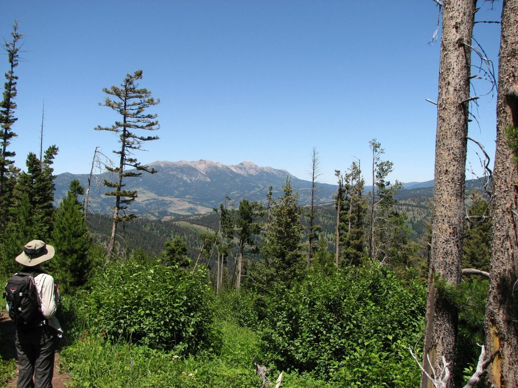 Photo of the Bridger Mountains as seen on the Chestnut Mountain trail