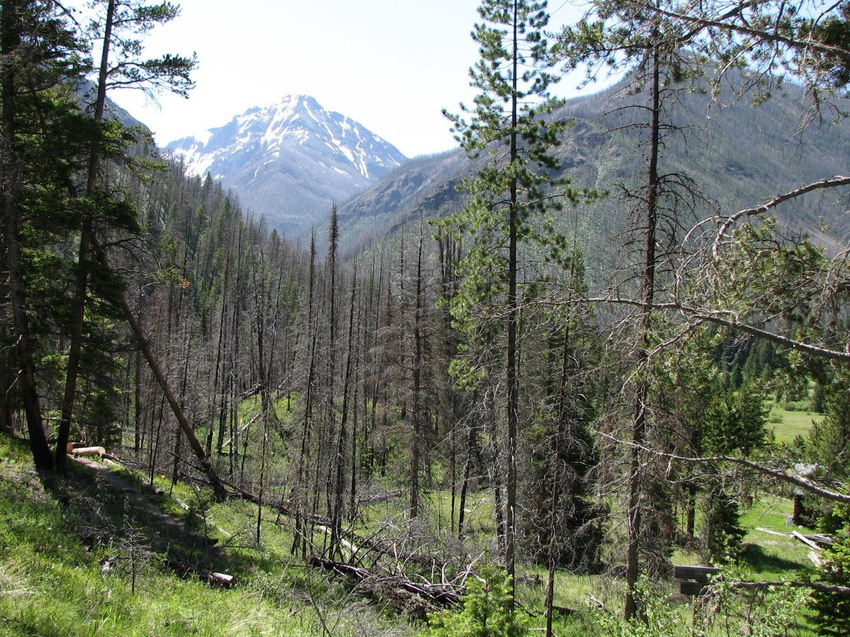 A typical view from the Passage Creek trail