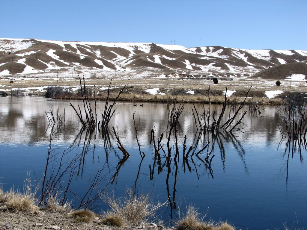 Photo of pond at Warm Springs Wildlife Management area